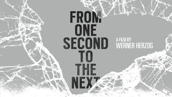 From One Second to the Next (2013)