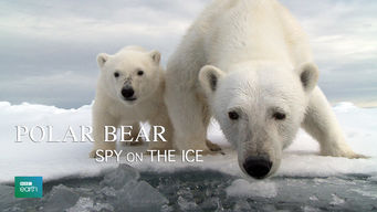 Polar Bear: Spy on the Ice (2010)