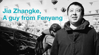 Jia Zhangke, A Guy from Fenyang (2014)