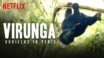 Virunga: Gorillas in Peril (2015)