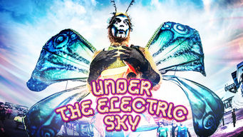 Under the Electric Sky: EDC 2013 (2014)