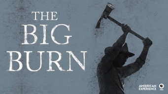 American Experience: The Big Burn (2014)