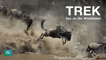 Trek: Spy on the Wildebeest (2007)