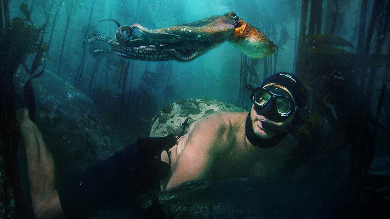 Il mio amico in fondo al mare   Sito ufficiale Netflix